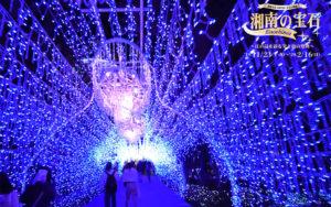 湘南の宝石_光のトンネル